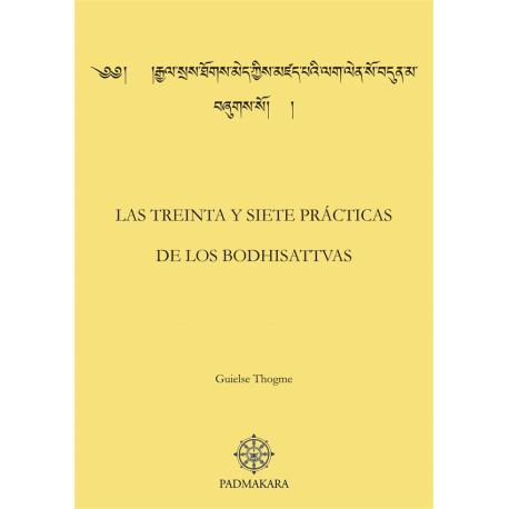 Treinta y siete practicas (Las)
