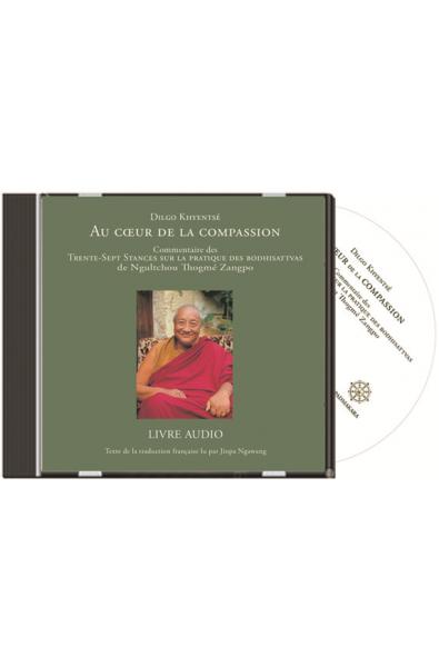 Au coeur de la Compassion - Livre Audio CD mp3