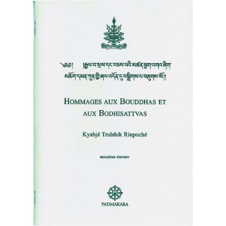 Hommage aux Bouddhas