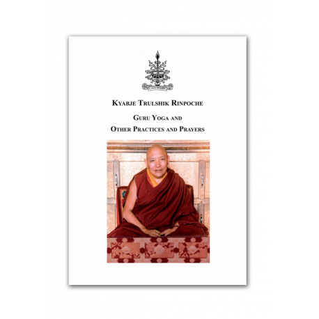 Kyabje Trulshik Rinpoche Guru Yoga and other practices - ebook pdf