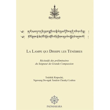 Lampe qui dissipe les ténèbres (La) - ebook pdf