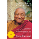 Au Coeur de la Compassion - ebook - format epub