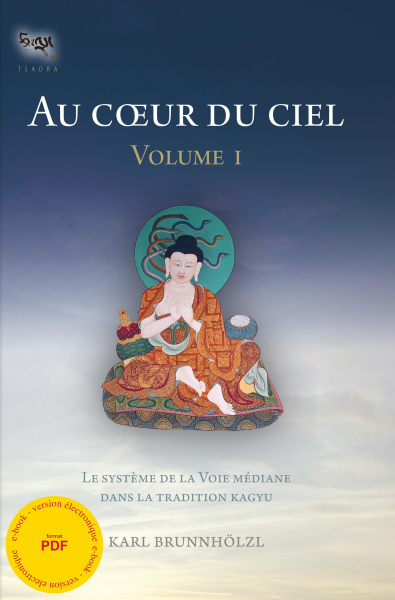 Au coeur du ciel - vol. I - ebook - pdf