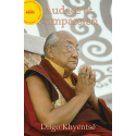 Audace et Compassion - ebook - format epub