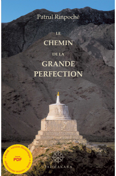 Chemin de la Grande Perfection - ebook - pdf