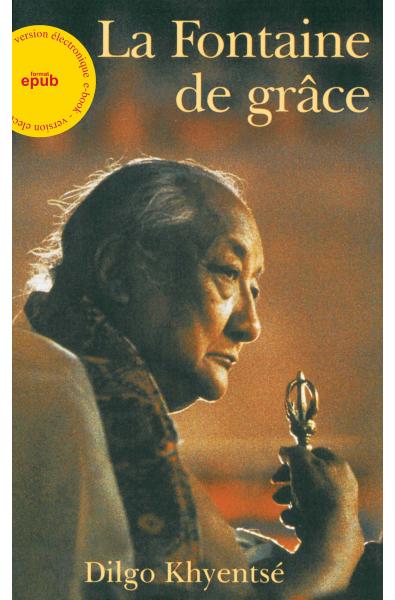 Fontaine de Grâce - ebook - format epub