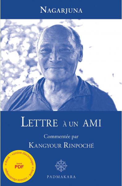 Lettre à un Ami - ebook - format pdf