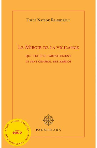 Miroir de la vigilance (ebook epub)