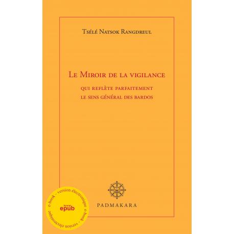Miroir de la vigilance (ebook PDF)