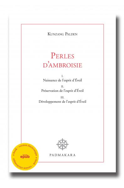 Perles d'Ambroisie - ebook - format epub