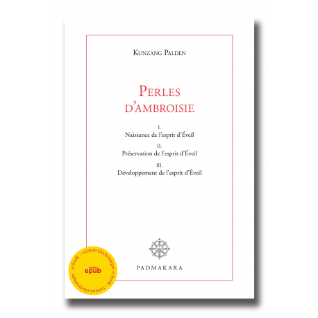 Perles d'Ambroisie - ebook - format epub