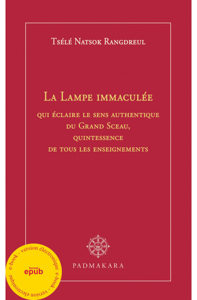 Lampe Immaculée - ebook - epub