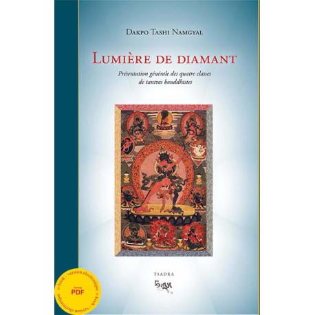 Lumière de diamant ebook - pdf