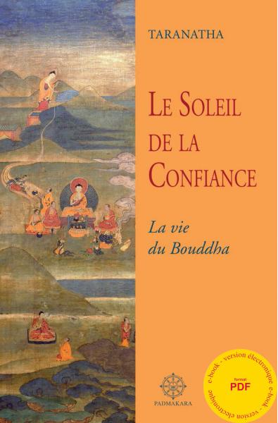 Soleil de la Confiance (Le) - ebook - format pdf