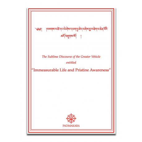Immeasurable Life and Pristine Awarness pdf