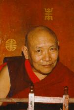 Kyabjé Trulshik Rinpoché
