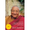Au Coeur de la Compassion - ebook - format pdf