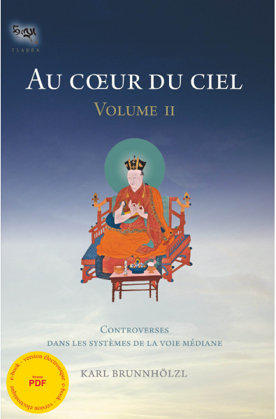 Au coeur du ciel - Vol. II - ebook - pdf