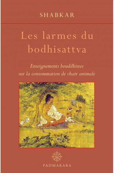 Larmes du Bodhisattva (Les)
