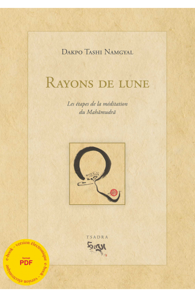 Rayons de lune - ebook - format pdf