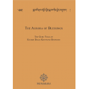 Aurora of Blessings PDF